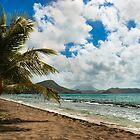 South Friars Bay, St. Kitts von JMChown