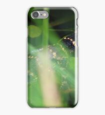 Two Baby American Alligators iPhone Case/Skin