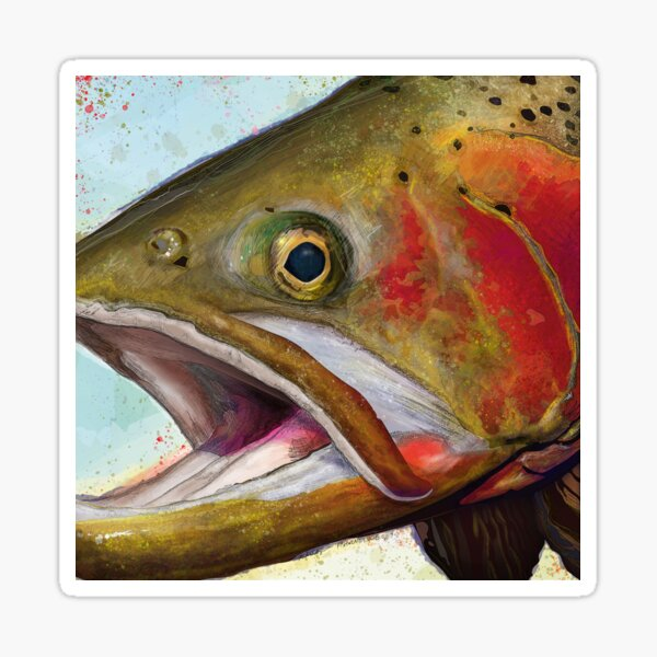 Greenback Cutthroat Trout Head Painting Sticker