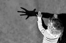 Catch My Shadow! von Marianna Tankelevich