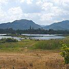 Thailand. Farming country near Hua Hin. by johnrf