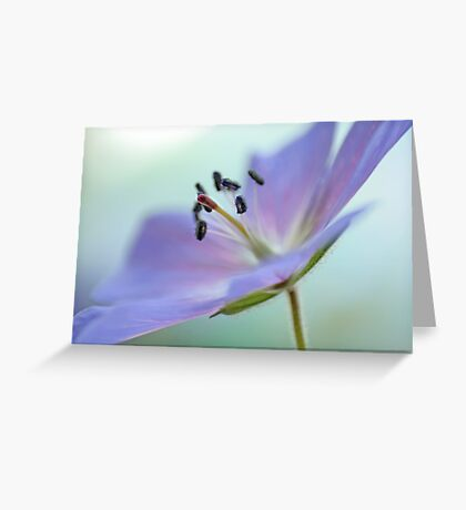 The Lightness of Moment Greeting Card