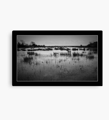 Newport Wetlands Canvas Print
