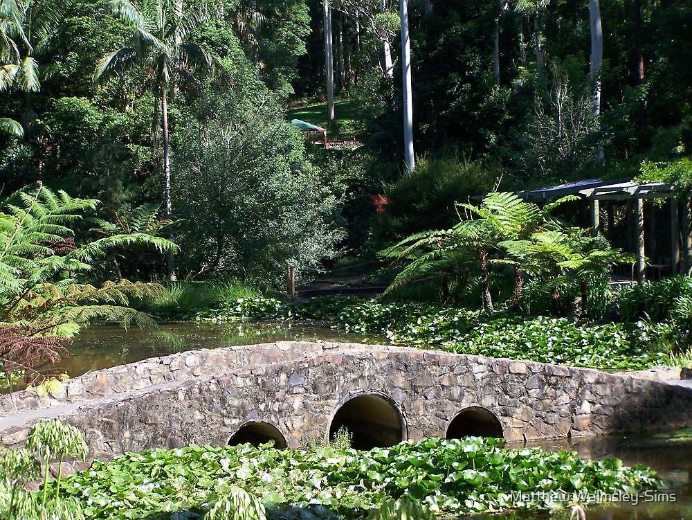 Bridge in the Botanical Gardens by Matthew Walmsley-Sims
