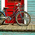 Old Bicycle by George Robinson