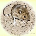Woodmouse by inkedsandra