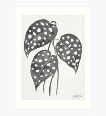 Leaves with Stains - Black & White Art Print