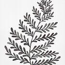Fern Leaf - Black & White by zephyrra
