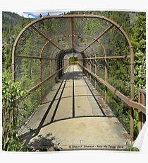 Kootenai Falls Bridge Poster