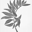 Tropical Leaf - Black Palette by zephyrra