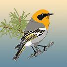 Olive Warbler by BennuBirdy
