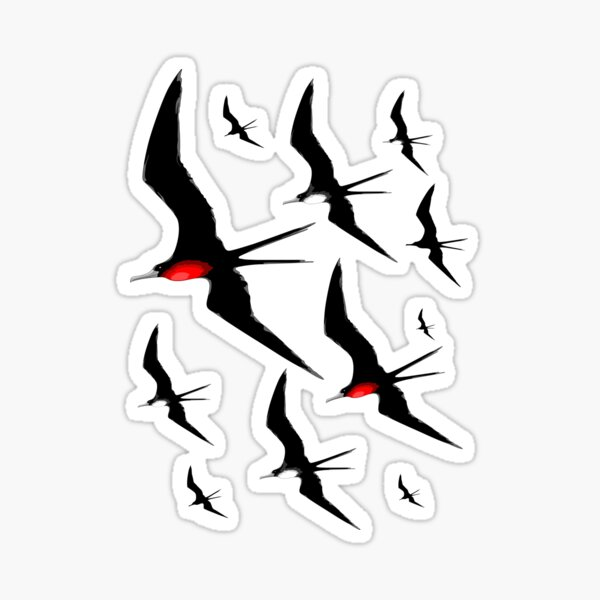 Frigate Birds Majestic Flight  Sticker