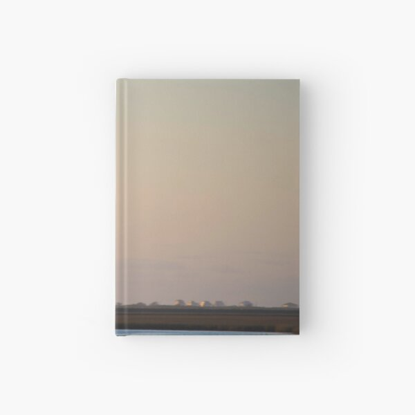 Flying Solo Hardcover Journal