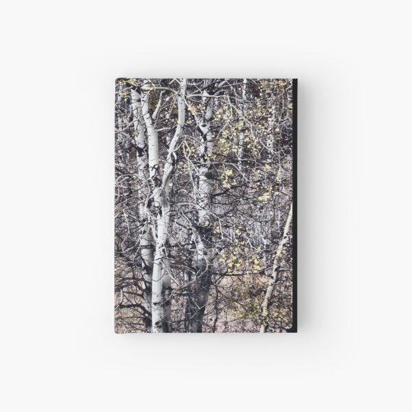 Birch Forest Hardcover Journal