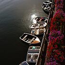 Boats & Early Morning Sun by Tom Deters