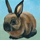 Adorable Bunny Rabbit by minorsaint