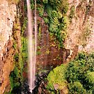 Queen Mary Falls by Kym Howard