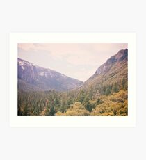 Yosemite forest Art Print
