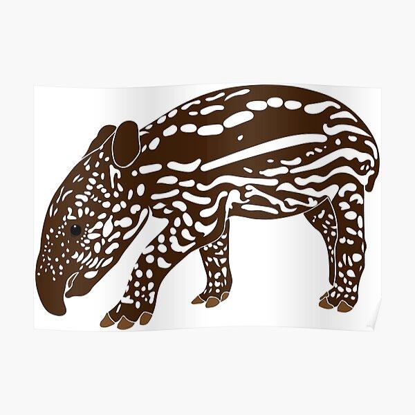 Baby Tapir Poster By Sebasauraus Redbubble
