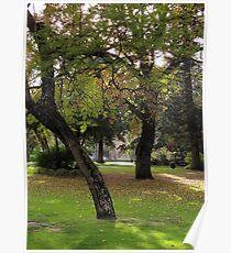Inner City Parkland Poster