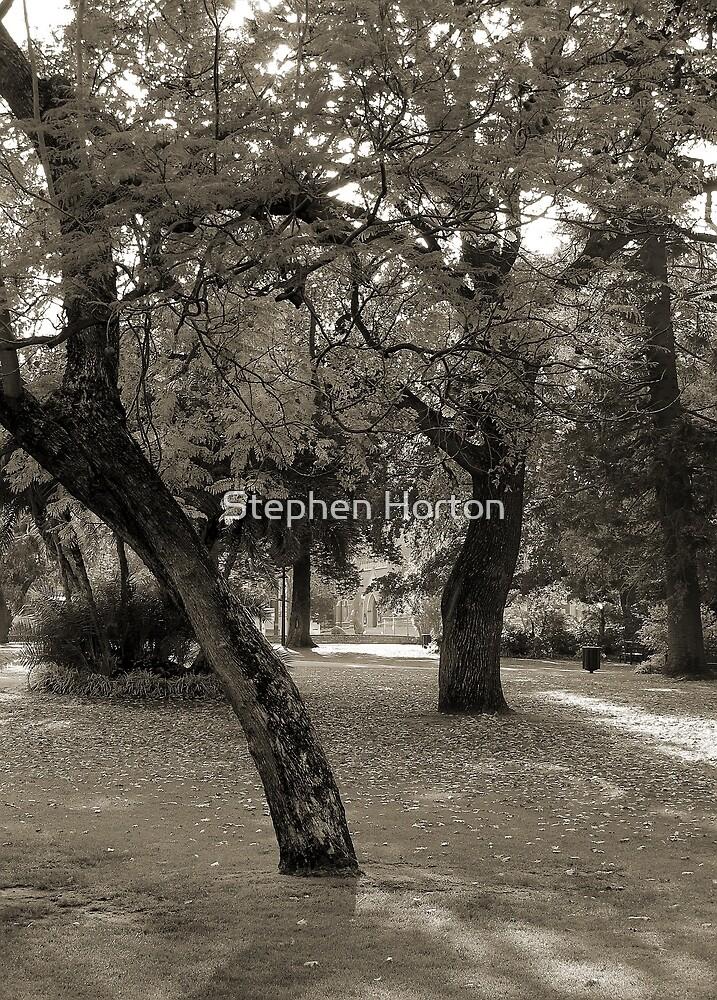 Inner City Parkland - Black & White by Stephen Horton
