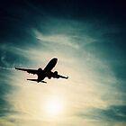 Plane at sunset by dazb