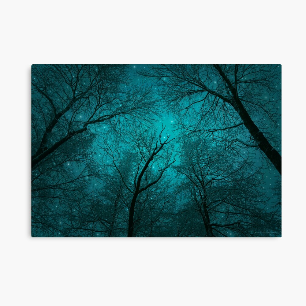 Simply Stare Upward Canvas Print