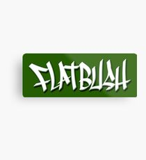 FLATBUSH Metal Print
