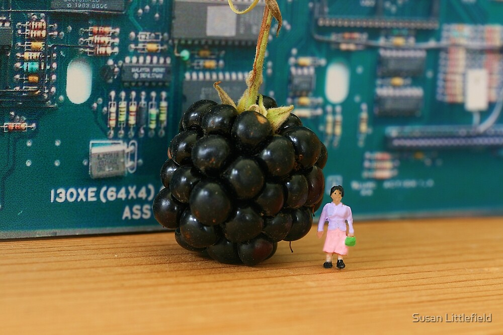 Edith's grasp of new technology is questionable; here she waits for her new Blackberry to ring. by Susan Littlefield