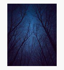 Ich habe die Sterne zu sehr geliebt Fotodruck