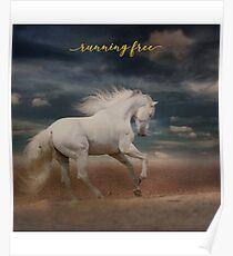 """White Horse Running on Beach Shirt, """"Running Free"""" Poster"""