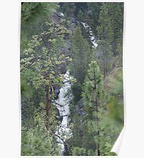 The Falls of Falls Creek, Washington Poster