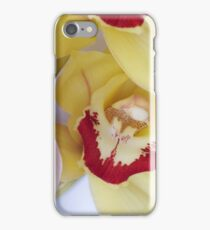 Cymbidium Orchid iPhone Case/Skin