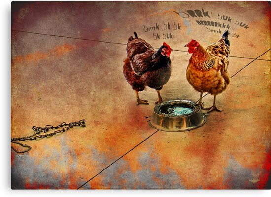 fowl language around the dog's bowl by carol brandt