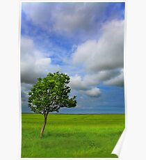 Sunk Island, East Yorkshire, UK Poster