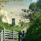 Steps down to Beach along Great Ocean Road, Vic. Australia by EdsMum