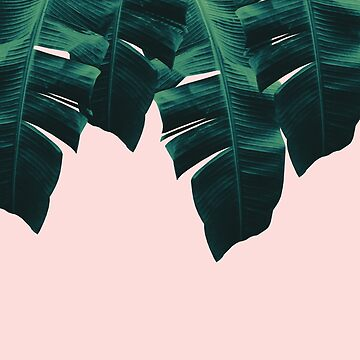 Tropical Blush Banana Leaves Vibes #1 #decor #art  by anitabellajantz