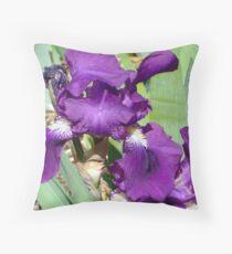 Sofala Irises Throw Pillow