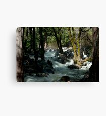 After the Fall Canvas Print