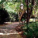 Walking on Petals by Sunshinesmile83