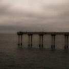 Pier@Ocean Beach by Mary Ann Reilly