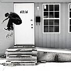 FS Flip by O J