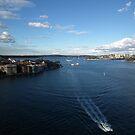Sydney Harbour June 2010 by Bernie Stronner