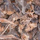 Woodpile in Winter by Sarah Vernon