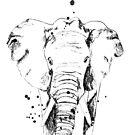 Der schwarze Elefant von Nadine Schnabel