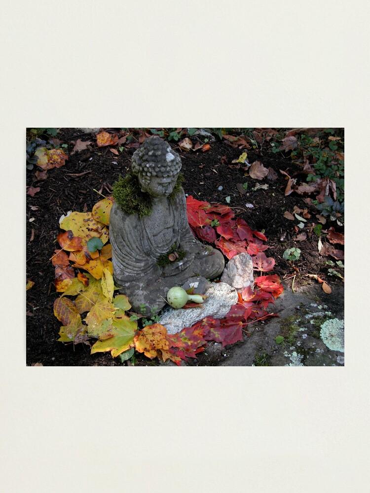 Alternate view of Buddha Mandala  Photographic Print