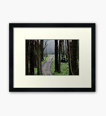 Bicentennial National Trail - Healesville end (Victoria) Framed Print