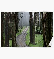 Bicentennial National Trail - Healesville end (Victoria) Poster