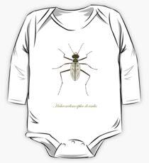Northeastern Beach tiger beetle, Habroscelimorpha dorsalis Long Sleeve Baby One-Piece