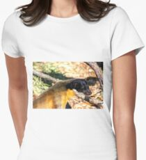 Yellow-Throated Marten Women's Fitted T-Shirt